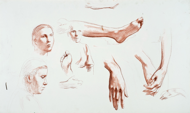 Голова девушки. Женская голова в профиль. Женская полуфигура. Ноги, кисти рук